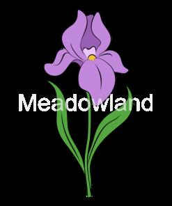Intermediate & Border Bearded Irises
